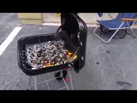 CHARCOAL BACKYARD GRILL GREAT FOR APARTMENT LIVING – REVIEW
