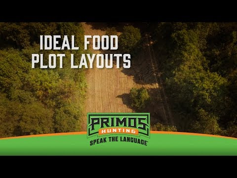How to Layout Your Food Plots for Deer Hunting video thumbnail
