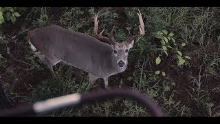 Bloodline | Whitetail Deer Hunting Film - Mossy Oak