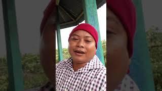 Video lucu willy jhin bhasa inggris