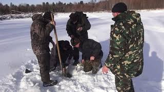 Ловля ленка зимой на жерлицы
