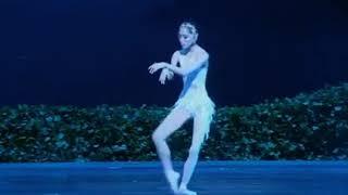 Swan Lake   China Acrobatic Circus Ballet