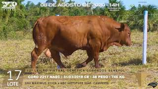 Coro 2217 b4 fiv