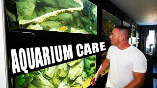 SO MANY AQUARIUMS!! How do I do it? | The King of DIY