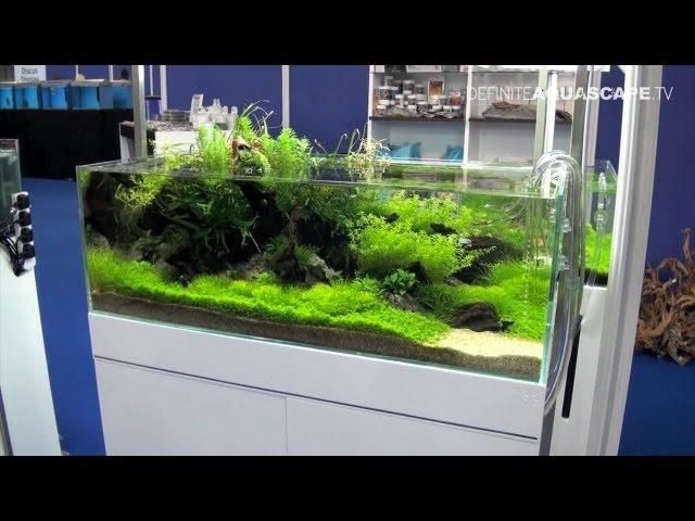 Aquascaping - Aquarium Ideas from Aquatics Live 2012, part 1