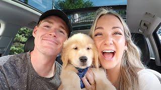 WE GOT A PUPPY | Bringing Home Our 8 Week Golden Retriever!!