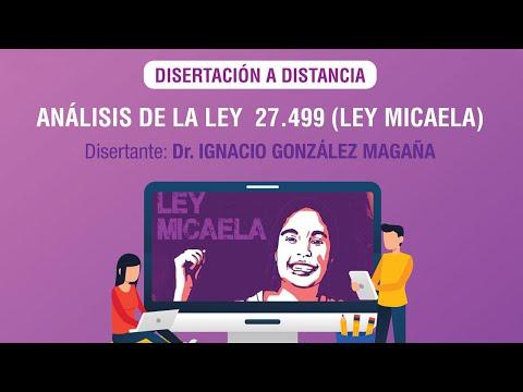 ANÁLISIS DE LA LEY MICAELA