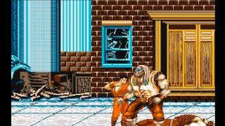 Final Fight (AMIGA)