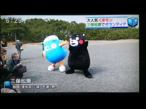 くまモン 静岡訪問 2日目 小学校にてくまモン体操