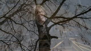 Video Villonská balada Francoisi Villonovi III.