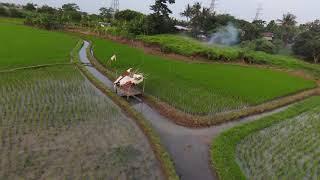 FCC DJI Fpv around the rice fields