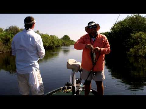 Florida Everglades Bass Fishing on the Jerk Bait with Capt. Shane
