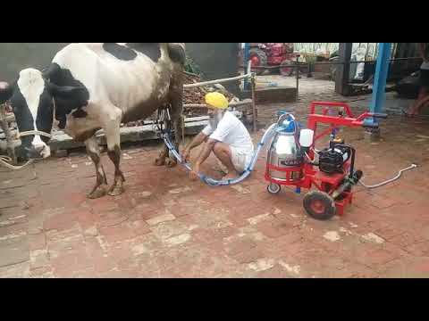 1HP-Trolley Type Milking Machine (PRIMA)