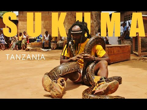 Python Sukuma dance