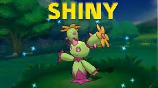 Maractus  - (Pokémon) - [LIVE] Shiny Maractus! 40 DexNav Encounters | Pokemon ORAS