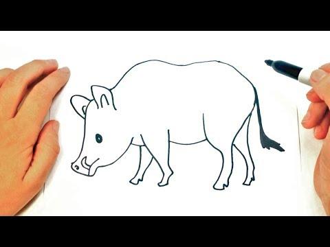 Como Dibujar Un Jabali Facil Como Dibujar