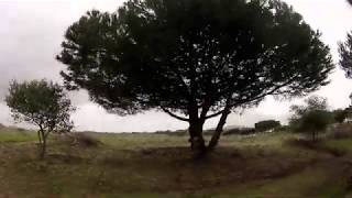 FPV Freestyle Portugal