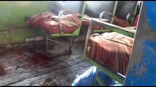Jammu and Kashmir C.R.P.F Camp Mehbooba Mufti