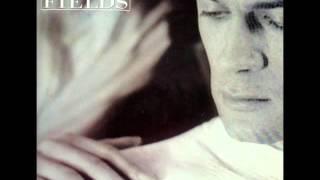 Vision Fields - Lyin' Eyes