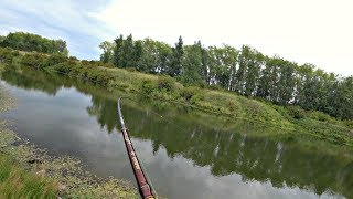 Рыбалка щуки летом на спиннинг