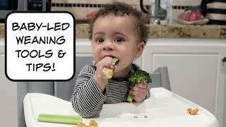 Baby Led Weaning For Beginners| Review Of Baby Led Weaning