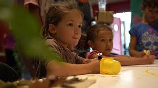 Image miniature - Clip vidéo de la 10e fête du miel et de la biodiversité