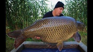 Аттрактант dynamite baits killer fish liquid 250мл