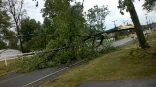 preview picture of video 'After Thunderstorm ATTACK Tree in Fort Wayne, Ind'