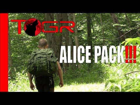 Famous - One and Only - Large ALICE Pack - Review
