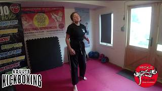 Adults Kickboxing A Day – W/C 18th May 2020
