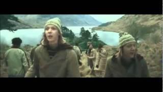 Семейство Уизли, 20 scene divertenti della famiglia Weasley
