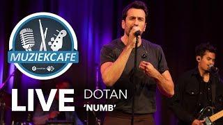 Dotan - 'Numb' live bij Muziekcafé