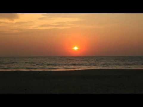 Минусовка песни птица счастья витас