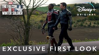 Trailer thumnail image for TV Show - The Falcon and the Winter Soldier