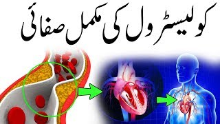 Top 10 Foods That Clean Your Arteries From Bad Cholesterol Naturally
