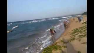 preview picture of video 'Rancho Pinto 03 08 2013   1/2 day beach'