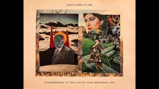 Catching Flies   A Soundtrack To The Film Of Your Imaginary Life