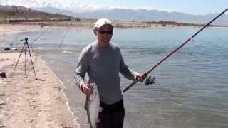 Рыбалка на иссык куль озеро