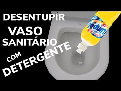Usando Detergente para Desentupir Vaso Sanitário
