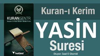 Yasin Suresi. Diyanet Meali Yasin Arapça Kuran Türkçe Meal.