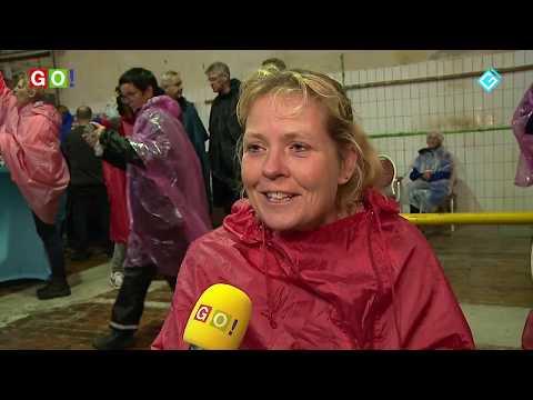 Ondanks veel regen een geslaagde 2e dag Tocht om de Noord. (VIDEO) - RTV GO! Omroep Gemeente Oldambt