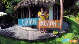 Смотреть онлайн Остров богов - Бали