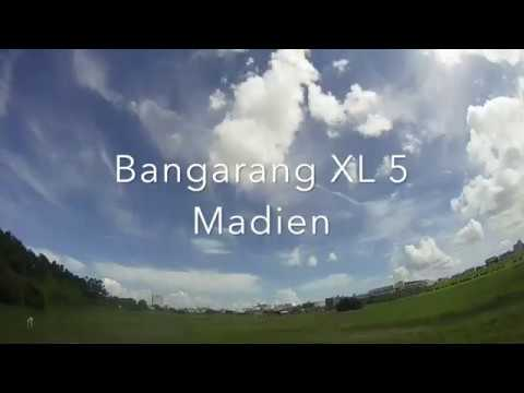 Bangarang XL 5 Maiden