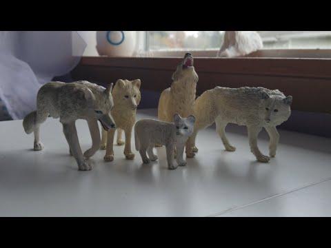 #wolf pack movie ! #kristina kashytska #wolf toys