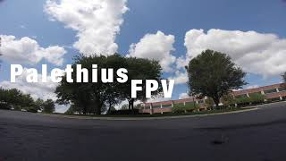 FPV Freestyle Practice - Tree Canopy Proximity - Apex Hero6 - One Pack