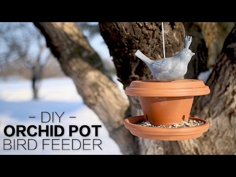 DIY Orchid Pot Bird Feeder // Garden Answer