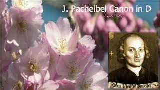 J  Pachelbel   Canon in D