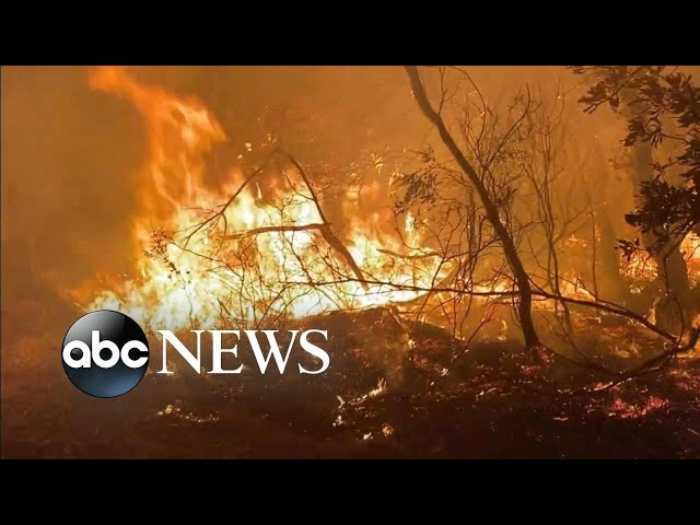 Crews race against time, weather changes to contain Australia fires | ABC News