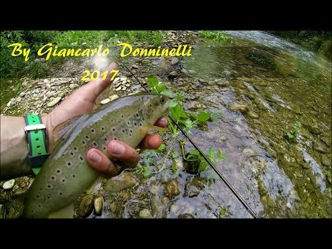 La pesca in Karelia per guardare il video del 2015