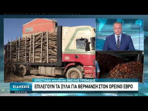 Ορεστιάδα: Επιλέγουν τα ξύλα για θέρμανση | 15/10/2020 | ΕΡΤ